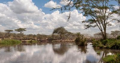 Serengeti-Nationalpark - Blick auf den See