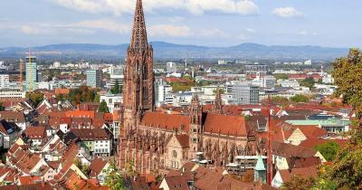 Freiburger Münster / Bild der Freiburger Münster