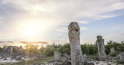 Gold beach - stone forest near Varna