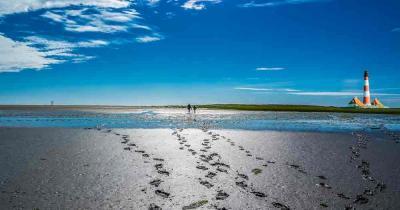 Nordsee - Wattwandern