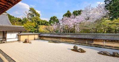 Kyoto - Zengarten mit Kirschblüten