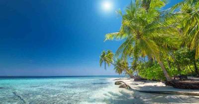 Hawaii - Blick auf das traumhafte Meer