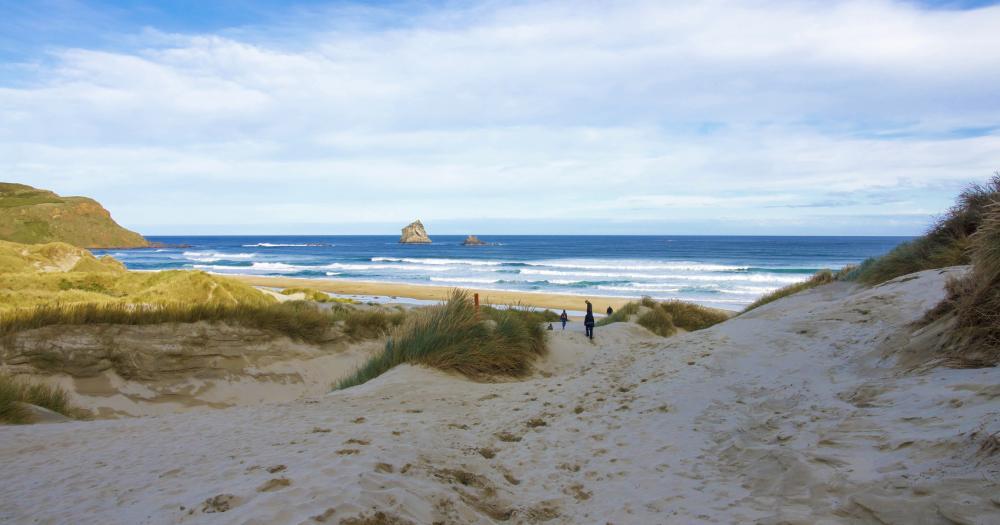 Auckland - Blick auf den Strand