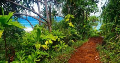 Na Pali Coast State Wilderness Park  / der Kalalau Trail