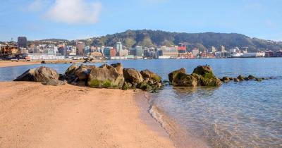 Wellington Harbour / Oriental Bay