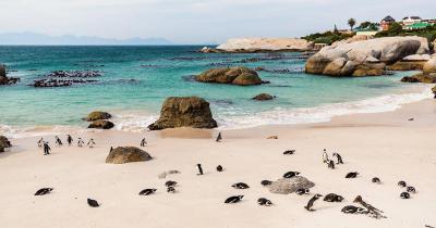 Cape Piont - schöner Sandstrand in Cape Piont