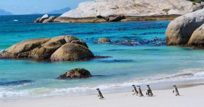 Bouder Beach - Bouder Beach in Südafrika