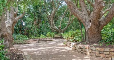 Kirstenbosch Botanical - Gehweg und Bank im nationalen botanischen Garten von Kirstenbosch