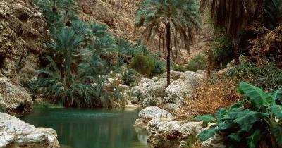 Wadi Shab - Wadi Shab Oase in Oman