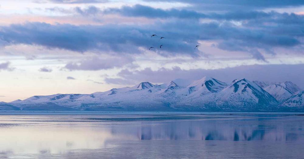 Yamzhog Yumco - der heilige See - schneebedeckte Berge im Hintergrund