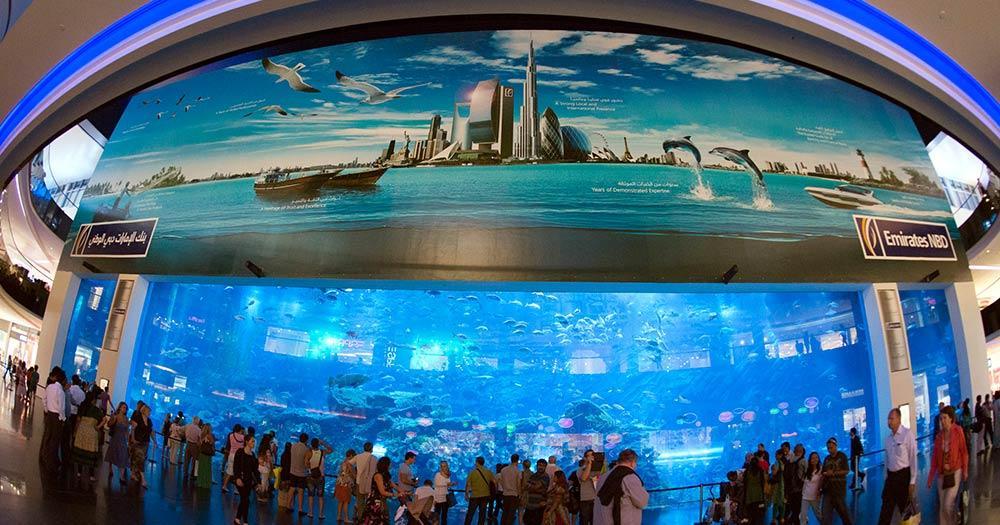 Aquarium Underwaterworld - im Einkaufszentrum