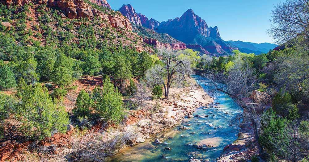 Zion National Park - Fluss Bilder