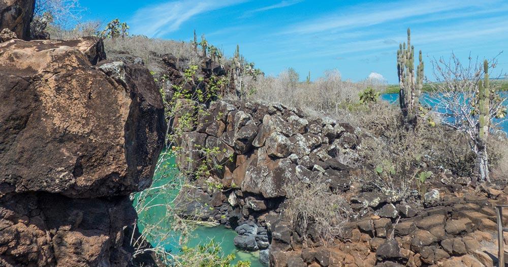 Galapagosinseln - Wasserloch auf Santa Cruz