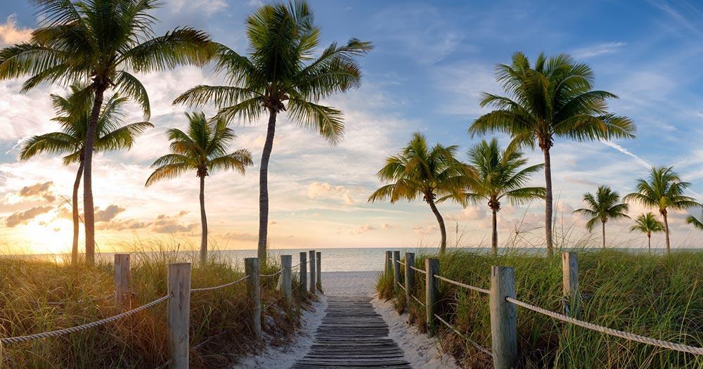 Key West - Herrliche Palmenstrände