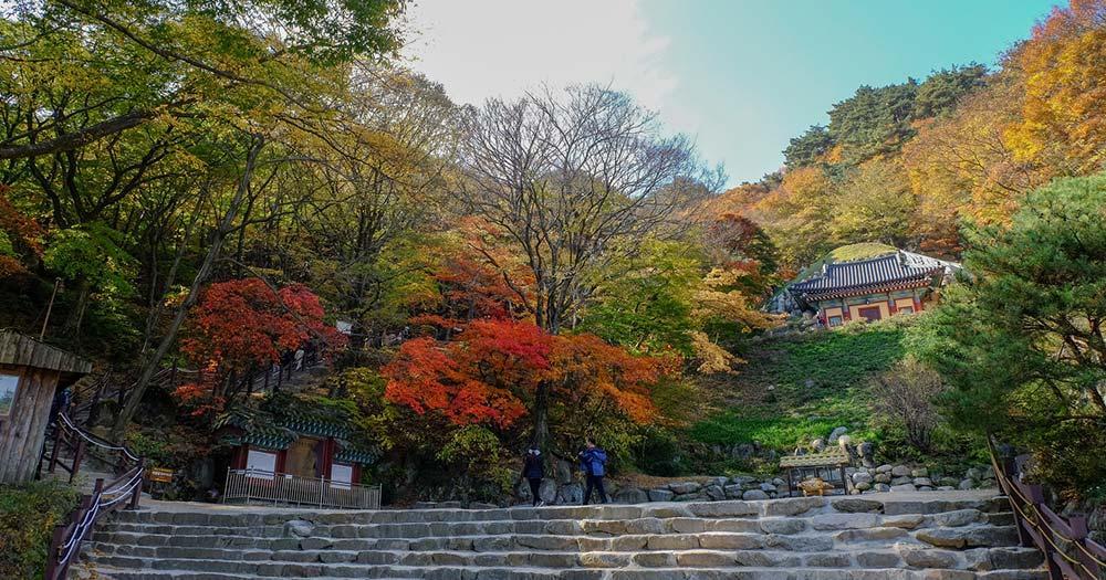 Gyeongju - Seokguram Grotto