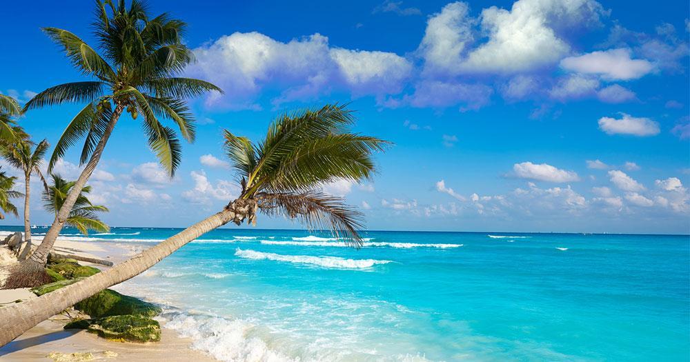 Playa del Carmen - Strand und Palmen
