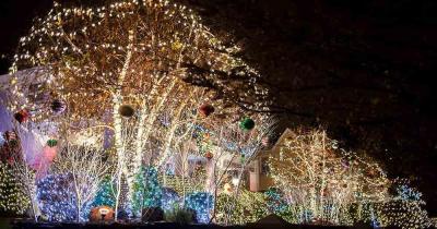 Dyker Heights - Weihnachtsbeleuchtung - beleuchtete Bäume