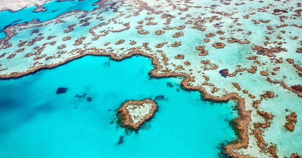 Great Barrier Reef - Vogelperspektive